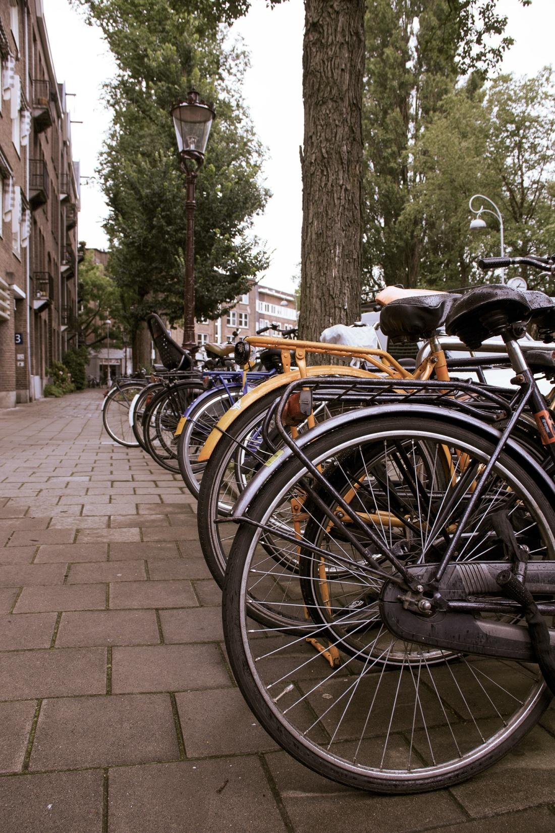 bicicletas-foto12