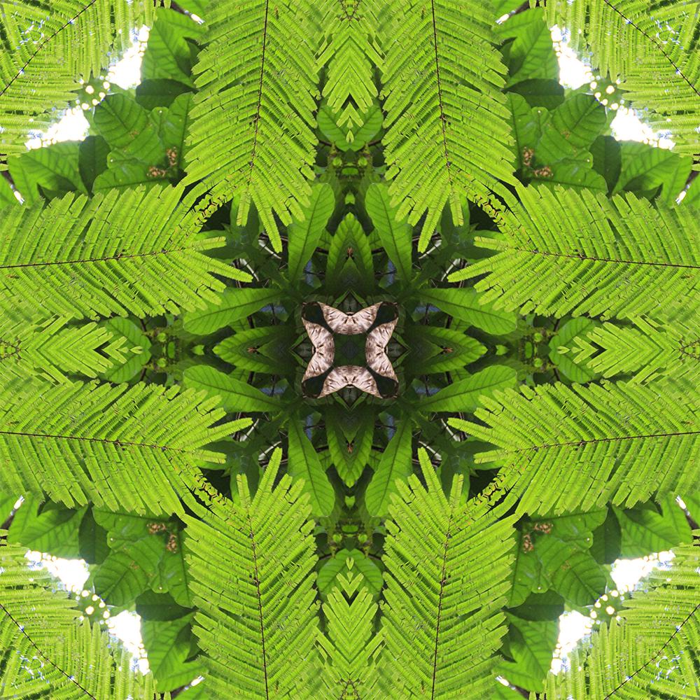 caleidoscopicas-imagem11