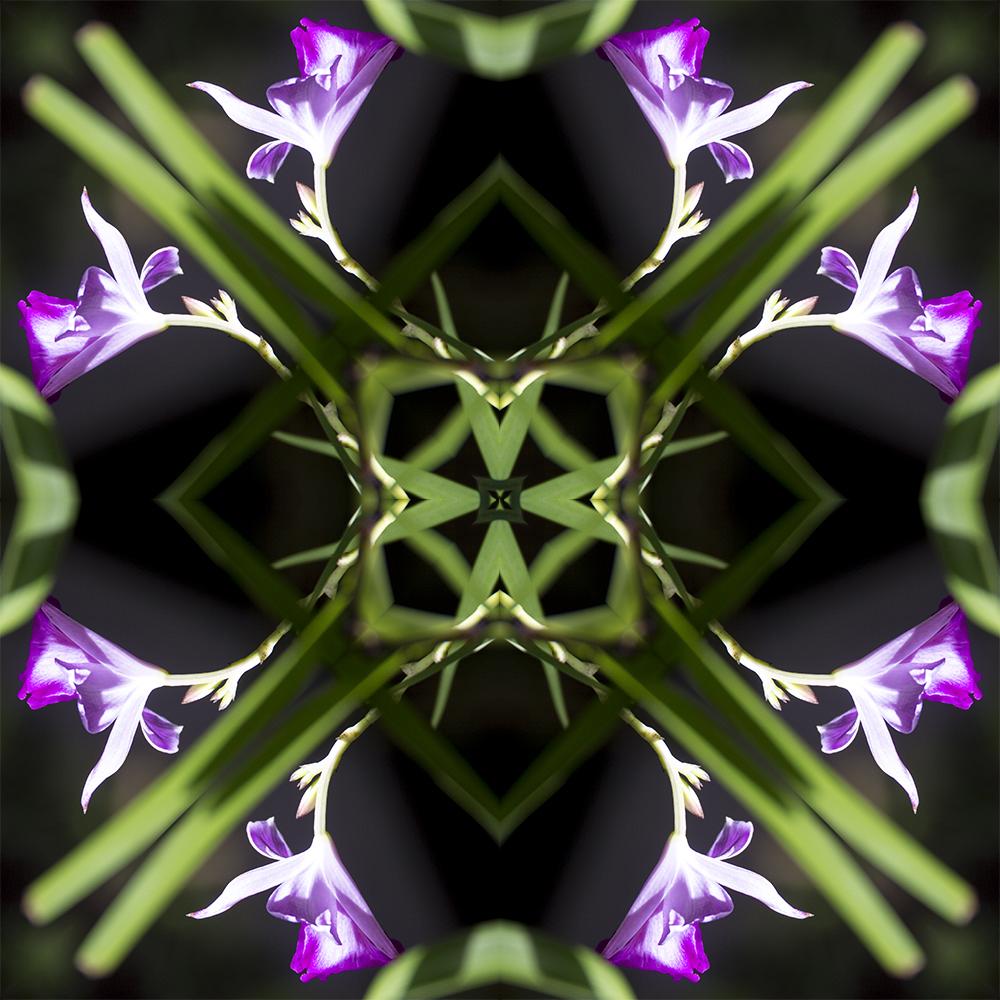 caleidoscopicas-imagem12